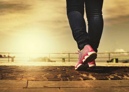 Konkurrens bättre än support för träningsprogram